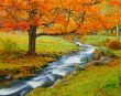 stock-photo-16769239-autumn-in-vermont